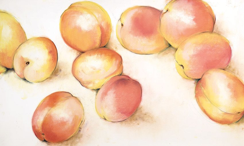 "Blenhiems (Apricots), 2013, pastel on paper, 36"" x 50"""