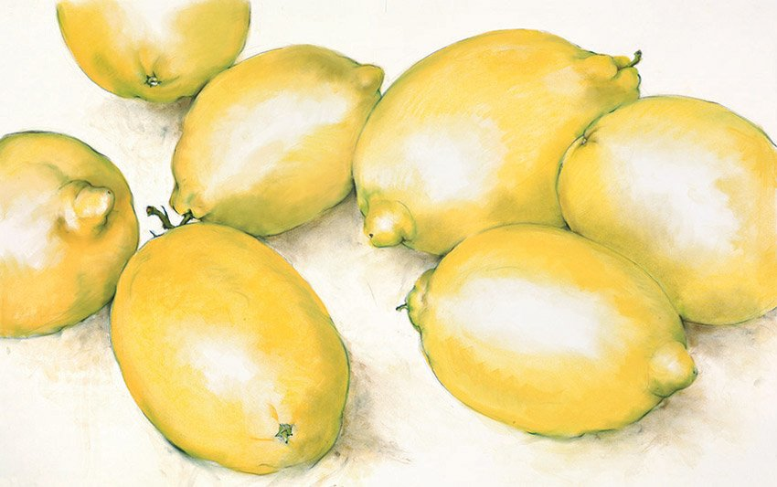 "Eureka Lemons, 2009, pastel on paper, 36"" x 50"""