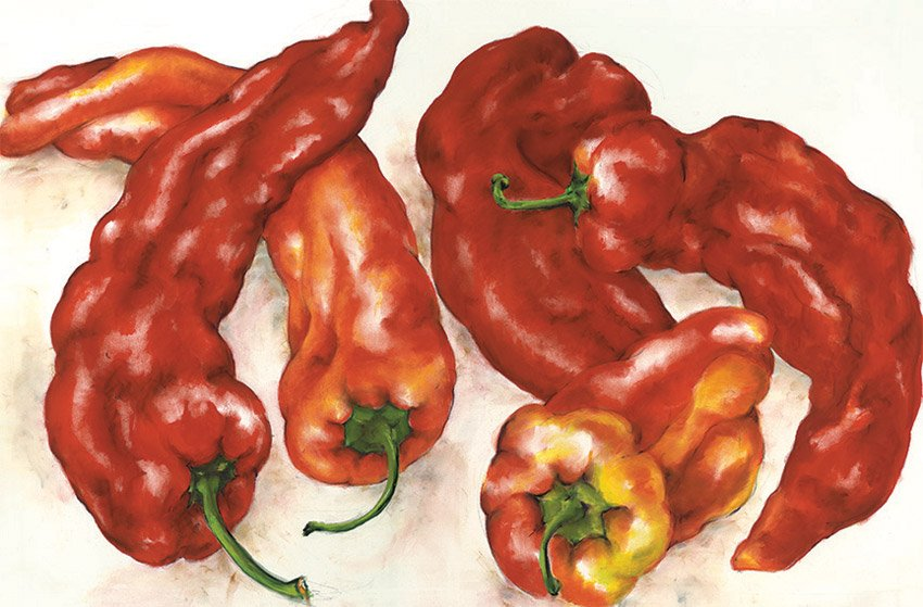 "Peppers, 2013, pastel on paper, 36"" x 50"""